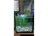 30 Litre Resun fish tank aquarium setup *Just add fish*