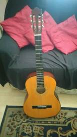 HOHNER Acoustic Guitar 🎸