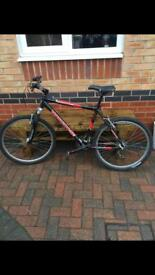 Men's mongoose mountain bike