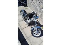 50cc baby chopper black and chrome