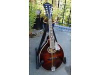 BEAUTIFUL EASTMAN MD504 RRP £799 CARVED ALL SOLID A STYLE MANDOLIN