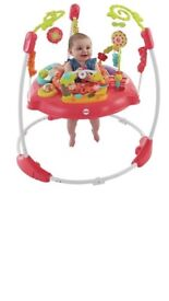 Fisher-Price Pink Petals Jumperoo - brand new in box
