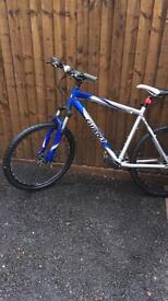 Giant push bike for sale £100 ONO!