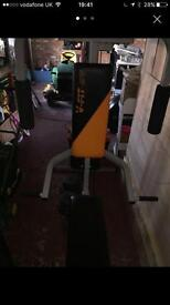 V - fit multi gym