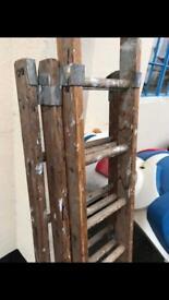 Extendable ladders retro