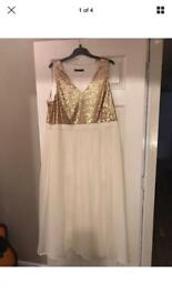 Ladies dress by definitions size 20