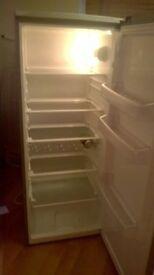 beko a class tall fridge