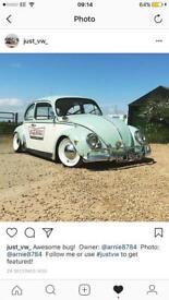 Classic 1966 bug
