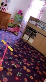 Purple butterfly carpet