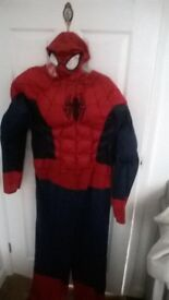 Spiderman Outfit Size L