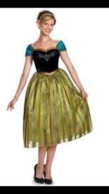 Dress size 12 NEW