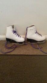 Ice Skates 12