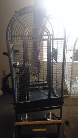Parrot cage and stand