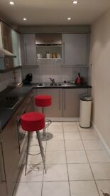 Newly updated 1 bed flat with gym and concierge close to Stockwell, Brixton & Clapham Nth Tubes
