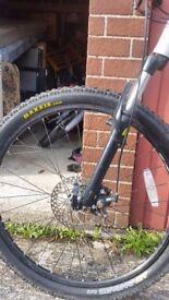 Carerra Mountain bike