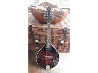 Stagg M50E Electro-acoustic Bluegrass Mandolin & Stagg MA10 Softcase. New & Unused. £85 (half RRP)