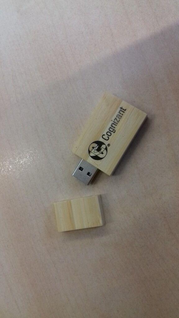 USB Flash Drive Storage