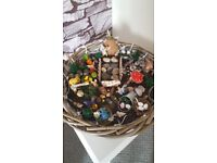 Personalised fairy gardens depending on size and requirements prices from £8.00