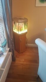 Fish Tank for sale with cabinet, pump and heater. Lovely condition