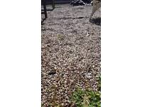 Gravel for free collection