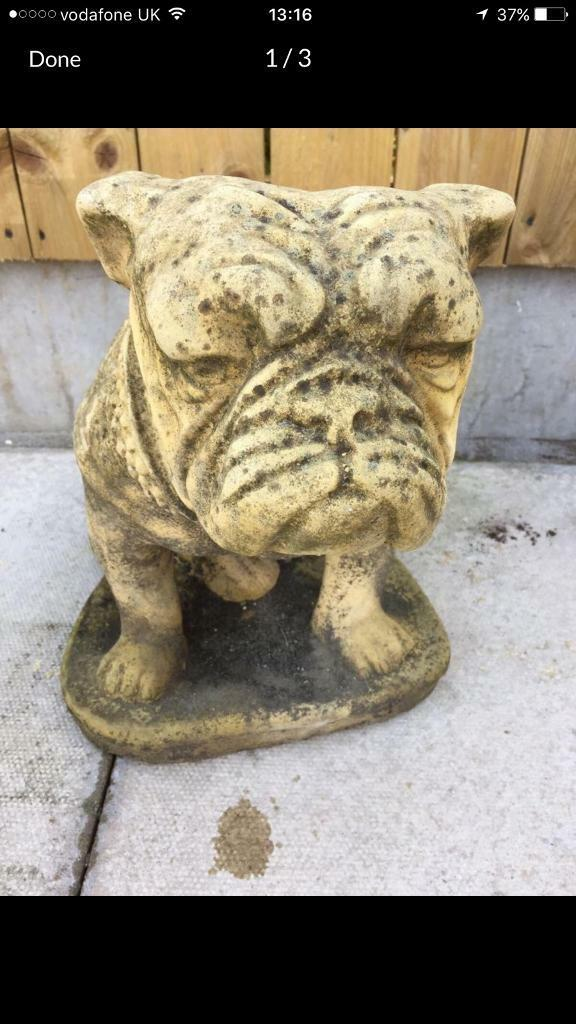 Stone bulldog (delivery available)