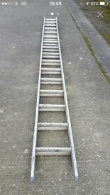 32 rung ladder