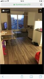 Large new 2 bed flat looking for 2 bed house or 1 bed with garden