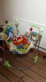 Fisher Price Jumperoo - has had very minimal use