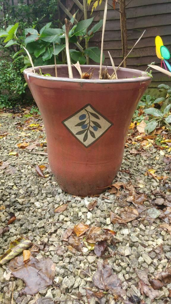 Three garden ceramic pots