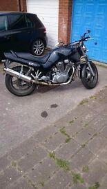 Suzuki VX800 for sale!