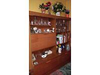 Teak Lounge Display Cabinet / Storage Cupboard