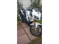 lexemoto 125cc xtrs 16plate 1owner
