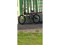 Silver fox freestyler bike.