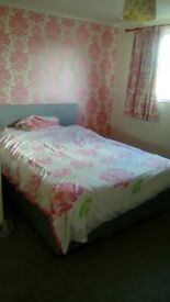 A Big and Beautiful Room @£240 per Month