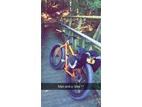 Fat bike Genesis 2015