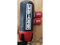 Bryan punch-bag for sale