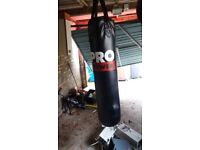 Punch bag, speed bag and weights