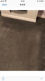 Grey carpet great condition