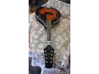 Mandolin in excellent condition very little use