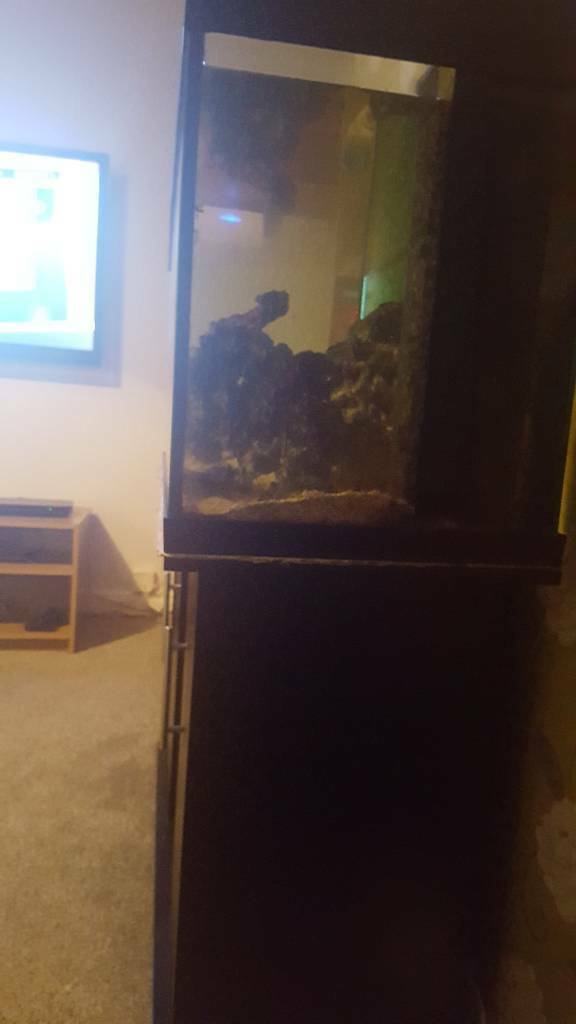 Marine fish tank and stand 4 foot
