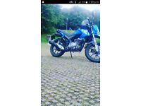 Lexmoto Assault 125 *Learner legal*