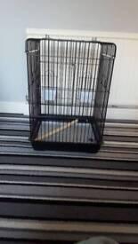 Parrot/birdcage