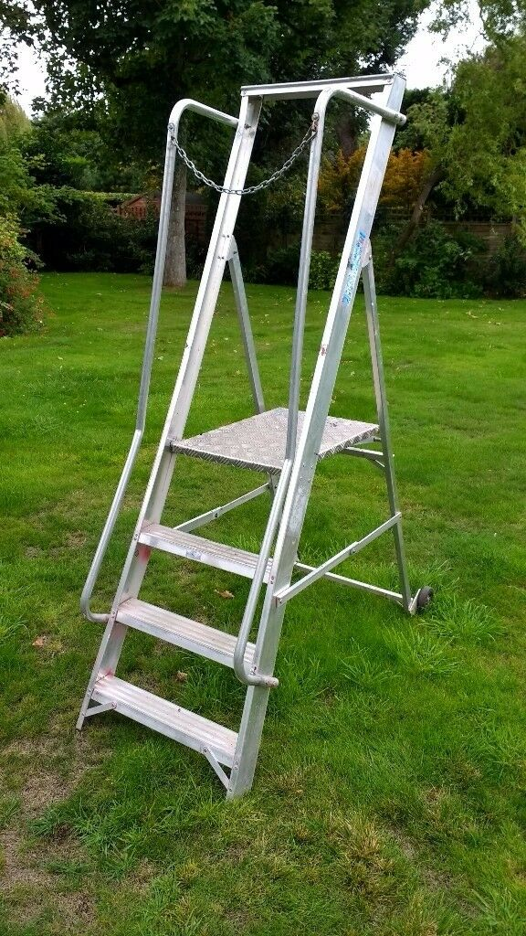 Professional Step Ladder