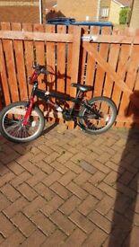 BMX bike £30