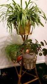 Flower stand wooden