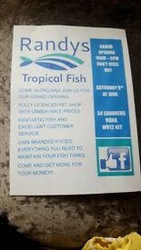 tropical fish open day