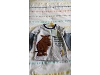 Long sleeve boy's Gruffalo too age 2-3. Brand new with tags from debenha ms.