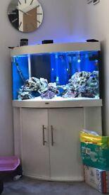 Fish tank Juwel 190 white