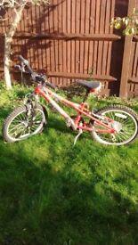 Boys Bike and Girls Bike ; Will sell separately