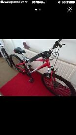Suspension bike with accessories